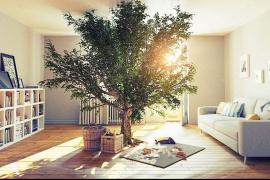 Pre útulný interiér, štýlový a zdravý zároveň